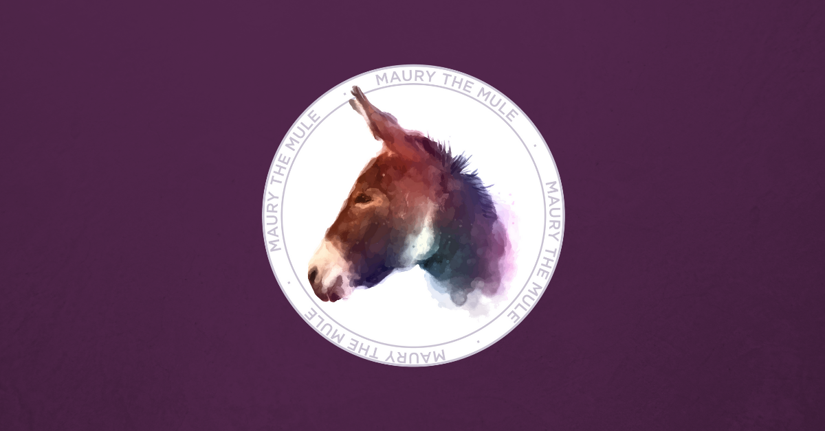 maury the mule, community, shop local